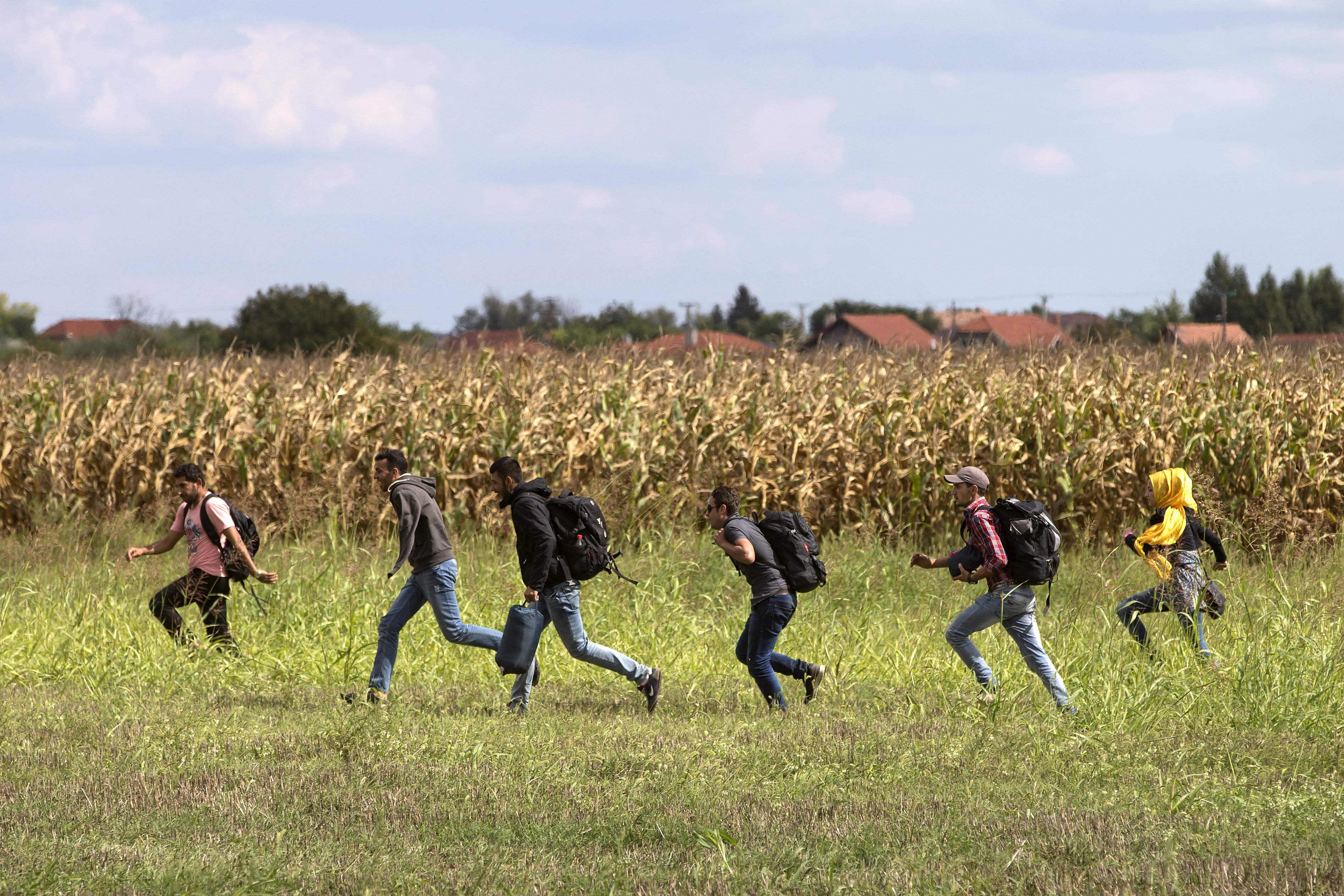 Migrants run from police as they escape from a collection point in Roszke village, Hungary.