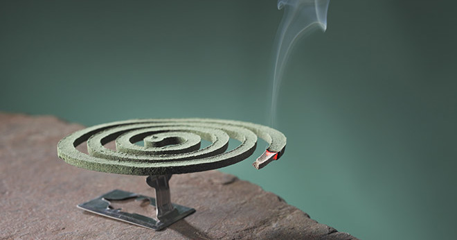 mosquito-coil Report Mosquito Coil In Your Home Might Actually Kill You (Shutterstock)
