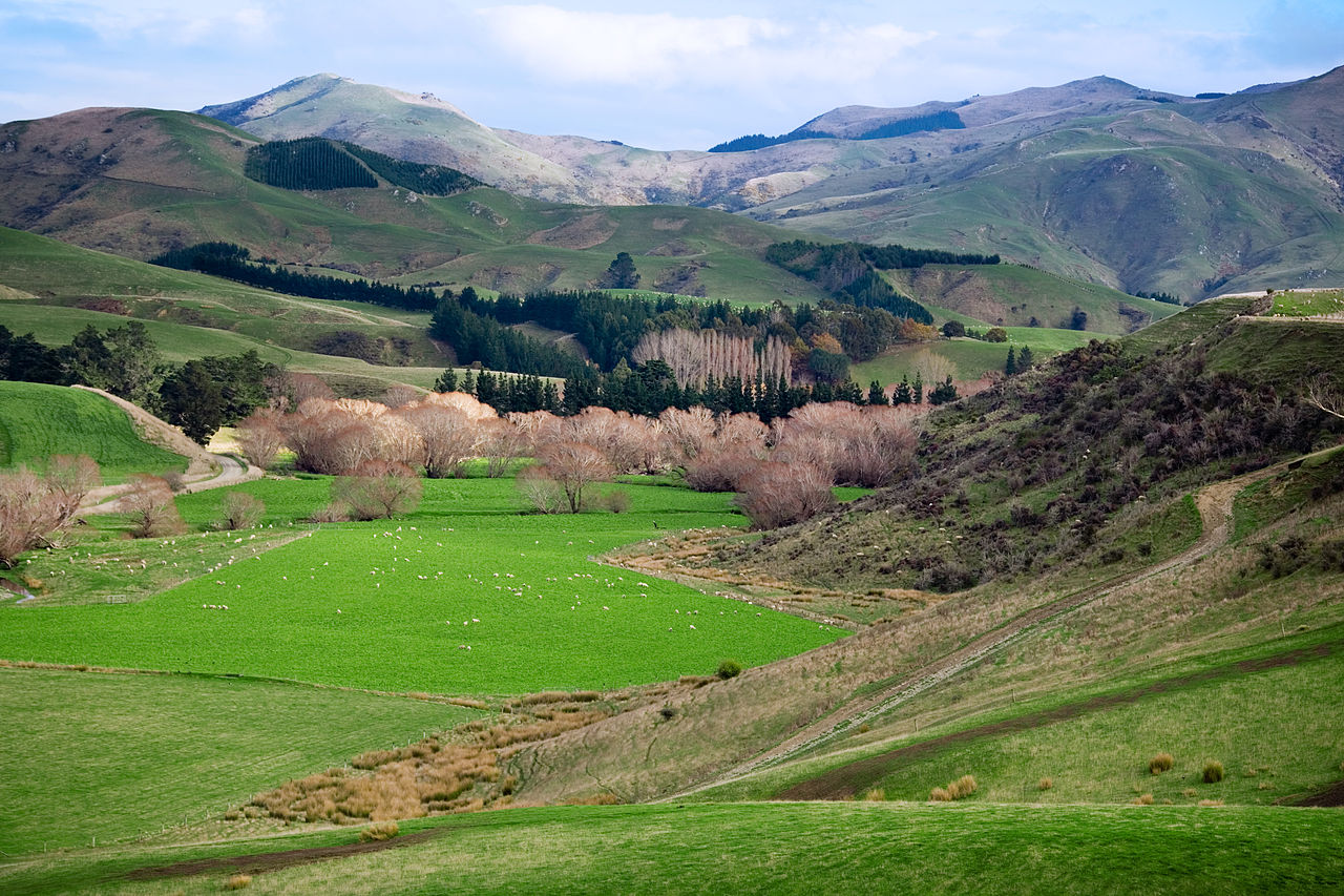 5 Things You Need to Know about Visiting New Zealand (commons.wikimedia.org)