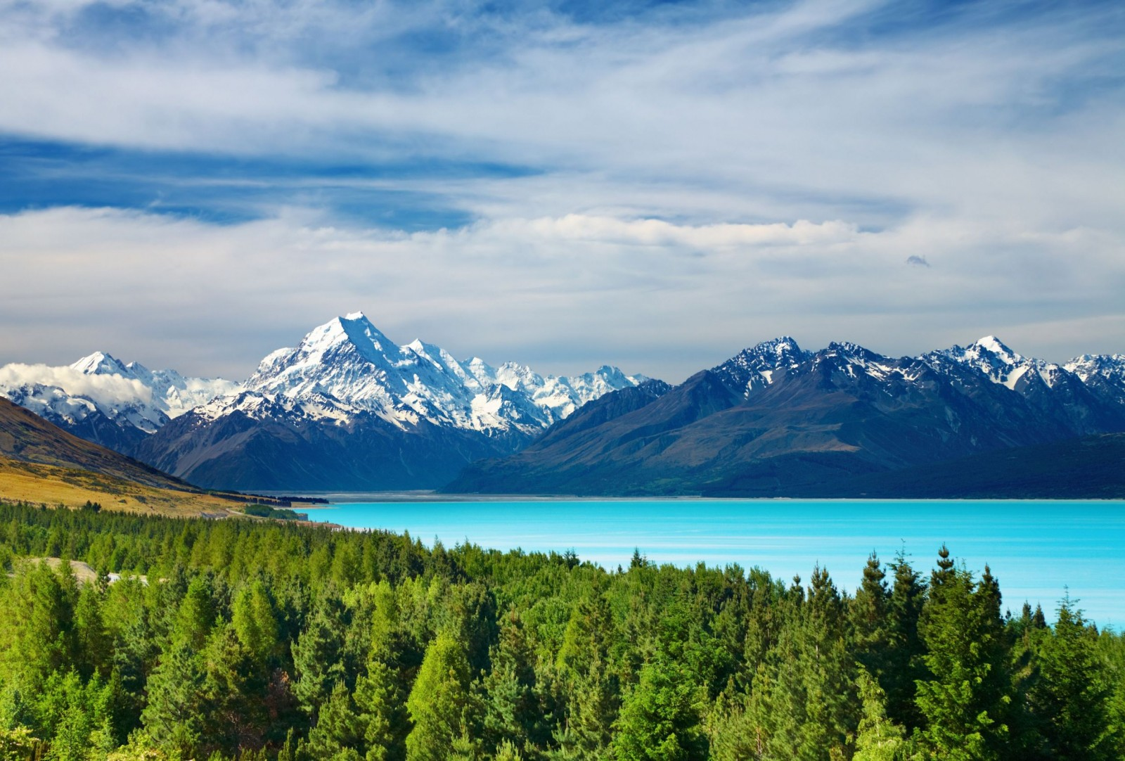 5 Things You Need to Know about Visiting New Zealand (www.sodahead.com)
