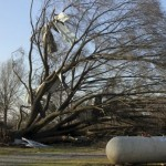 At least 14 killed in US storm