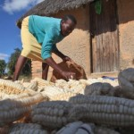 Child hunger, malnutrition on rise in Africa
