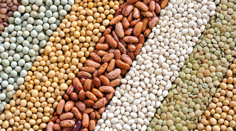 Eat More Beans If You Want To Lose Weight