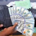 Top Nigerian scammer arrested