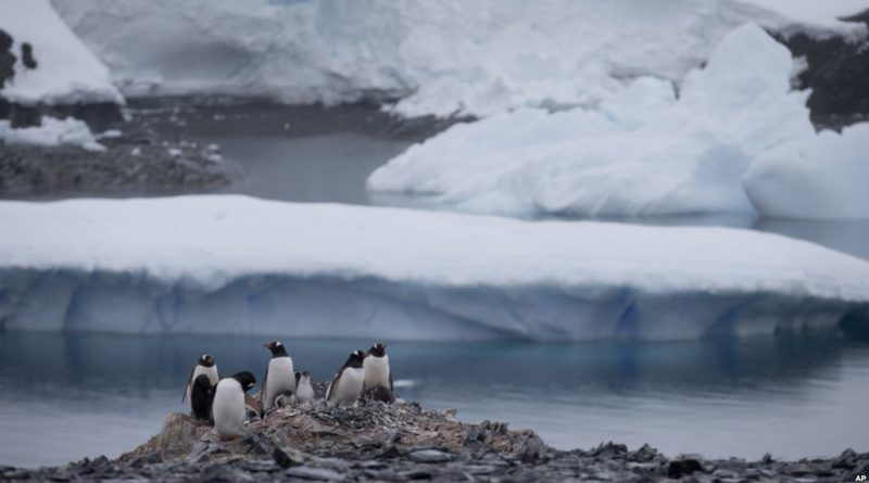 Arctic and Antarctic sea ice extent hits record low