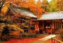 Top places to see Tokyo's fall colors